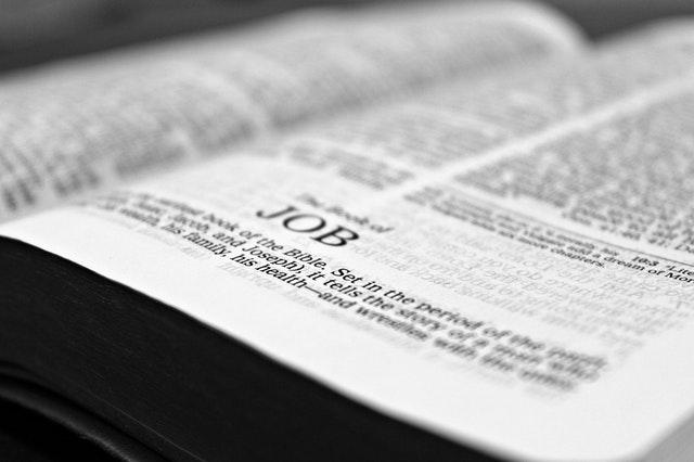 Bible open on chapter Job