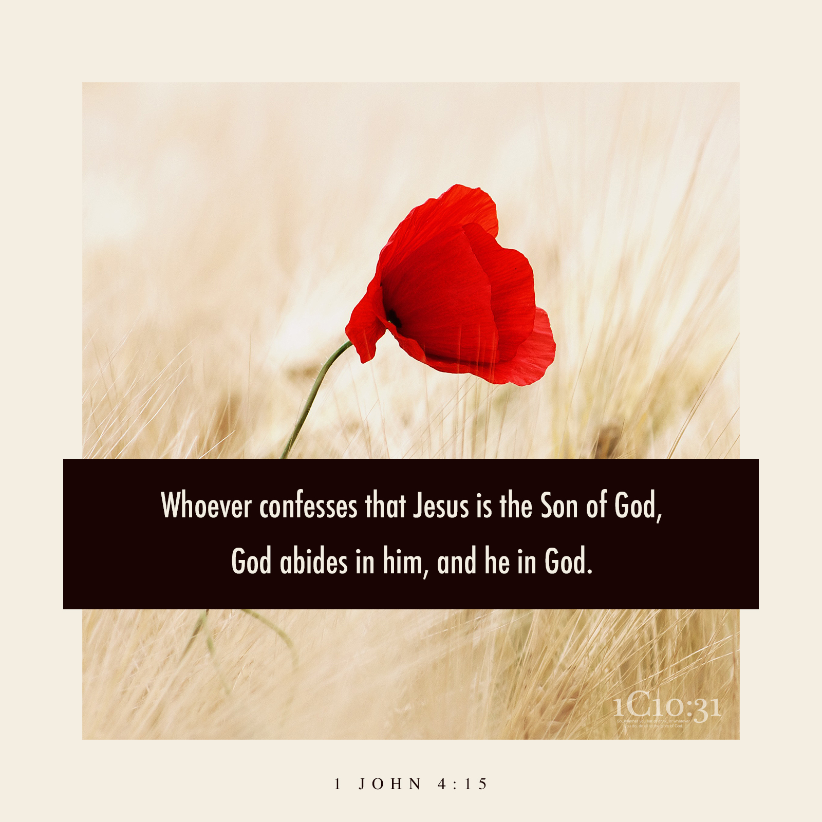1 John 4:15 (NKJV) Whoever confesses that Jesus is the Son of God, God abides in him, and he in God.