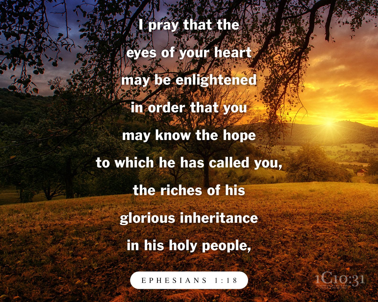 Ephesians 1:18 I pray that the eyes of your heart may be enlightened in order that you may know the hope to which he has called you, the riches of his glorious inheritance in his holy people,